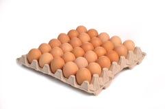 Treinta huevos Foto de archivo libre de regalías