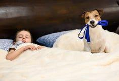 Trek de slaap van ` aan t, ga voor een gang met een hondconcept Royalty-vrije Stock Foto