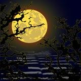 Trek ` t gaan aan lopend in het hout - verschrikking - Halloween vector illustratie