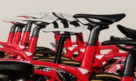 Trek team bikes during training camp in Mallorca Royalty Free Stock Image