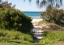 Trek to the Beach. Trek to Palm Beach on Australia's Gold Coast stock photo