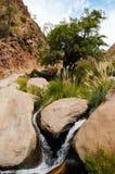 Trek van Cascadas del Rio Colorado stock foto