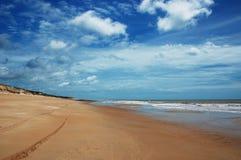 Treking in einem wilden Strand stockbild