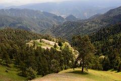 Treking f?r Lesser Caucasus royaltyfria bilder