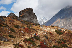 Treking in Himalayas Royalty Free Stock Images