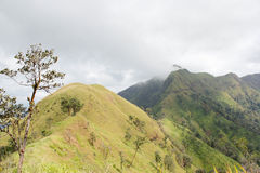 Treking mountain Stock Photography
