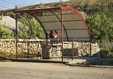 Trekken-goed in Trebujeni-dorp moldova royalty-vrije stock fotografie