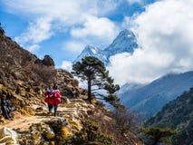 Trekker с красивой предпосылкой гор стоковые изображения