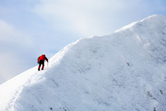 Trekker alpino Immagine Stock Libera da Diritti