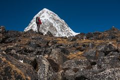Trekker approaching PumoRi mountain in Khumbu valley on a way to. Everest Base camp Royalty Free Stock Photography