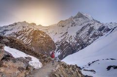 Trekker auf dem Weg zu niedrigem Lager Annapurna, Nepal lizenzfreie stockbilder