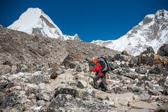 Trekker che si avvicina alla montagna di PumoRi in valle di Khumbu su un modo a fotografia stock