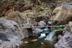 Trekker crossing bridge Royalty Free Stock Images