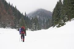 Trekker dans la neige image stock