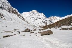 Trekker dans le sanctuaire d'Annapurna image libre de droits