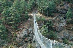 Trekker en el puente de suspensión Fotos de archivo libres de regalías