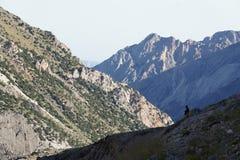 Trekker en el valle de Aktash, Pamir-alay Fotografía de archivo libre de regalías