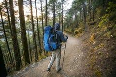 Trekker en vallée de Khumbu sur un chemin au camp de base d'Everest Images libres de droits