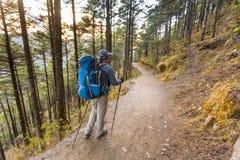 Trekker en vallée de Khumbu sur un chemin au camp de base d'Everest Image stock