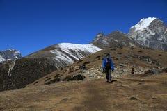 Trekker  beside of everest basecamp from everest trek nepal Royalty Free Stock Photos