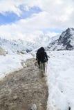 Trekker from everest trek route Stock Images