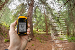 A trekker is finding the right position in the forest via gps in a cloudy autumnal day Royalty Free Stock Images