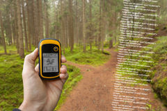 A trekker is finding the right position in the forest via gps in a cloudy autumnal day Stock Image