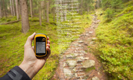 A trekker is finding the right position in the forest via gps in a cloudy autumnal day Royalty Free Stock Photography