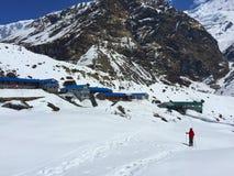 Trekker i bergen, Himalaya Royaltyfri Foto
