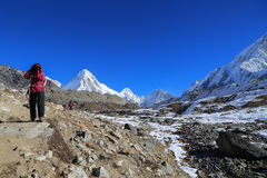 Trekker kala patthar and pumo ri summit from everest trek Royalty Free Stock Photography