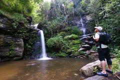Trekker man rain forest national park Royalty Free Stock Images