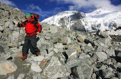 Trekker in montagne di Altai, picco di Belukha Fotografia Stock Libera da Diritti
