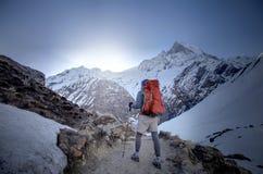 Trekker na maneira ao acampamento base de Annapurna, Nepal imagens de stock royalty free