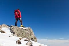 Trekker neemt de horizon waar Royalty-vrije Stock Foto's