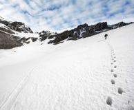 Trekker och fotspår i snön. Royaltyfri Fotografi
