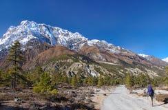 Trekker que se ejecuta en el camino contra Annapurna Fotos de archivo