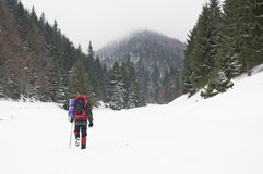 Trekker in snow Stock Image