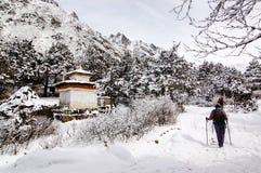 Trekker solo sull'itinerario di trekking di everest Immagini Stock Libere da Diritti