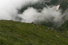 Trekker sul percorso Fotografia Stock