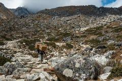 Trekker und Träger mit Landschaft des Berges und des Flusses auf dem w stockbilder