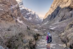 Trekker in the valley on the way to Annapurna base camp, Nepal.  royalty free stock images