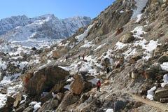 Trekker walk to everest basecamp from everest trek Royalty Free Stock Image