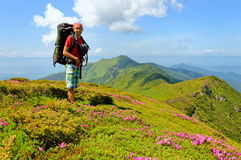 Trekker walking flowers field in mountain Royalty Free Stock Photography