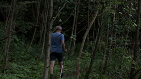 Trekker walks away into the forest. Men trekking dressed in hiking gear with poles in the nature stock footage