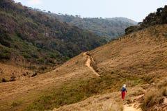 Trekker walks in Horton Plains National Park Royalty Free Stock Photography