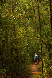 Trekker walks in jungles in Sri Lanka Royalty Free Stock Images