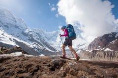 Trekker on the way to Annapurna base camp, Nepal Royalty Free Stock Photo
