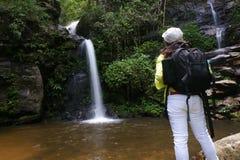 Trekker woman rain forest national park. Trekker woman backpack enjoy rain forest national park royalty free stock photos