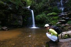 Trekker woman rain forest national park. Trekker woman enjoy rain forest national park stock photography