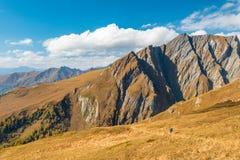 Trekker wycieczkuje w jesieni alps z wyborowymi góra talerzami wewnątrz za, Grossglockner teren, Tyrol, Austria obraz stock